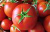 cách bảo quản rau quả đúng cách trong tủ lạnh